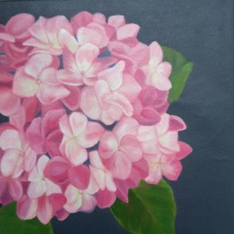 Нежная розовая гортензия, картина маслом на холсте