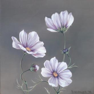 Космея, цветочная живопись маслом на холсте, размер 24х24см. Холст на подрамнике