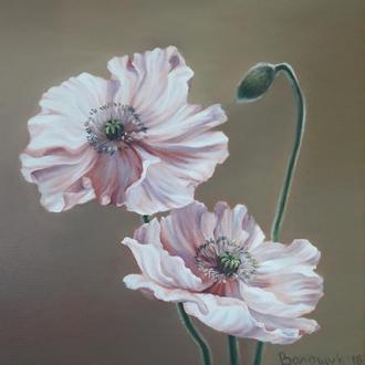 Розовый, белый мак, цветы, картина маслом на холсте, размер 24х24см.