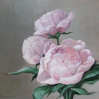 Нежные цветы пионы, картина маслом на холсте, размер 24х24см