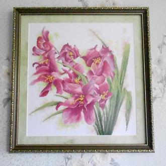 "Картина "" Орхидеи """