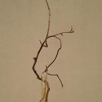 Деревянный LED светильник настольный из элементов вяза и яблони