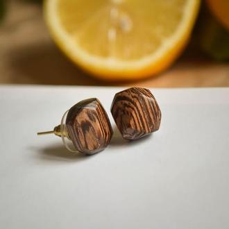 Сережки з екзотичної деревини венге