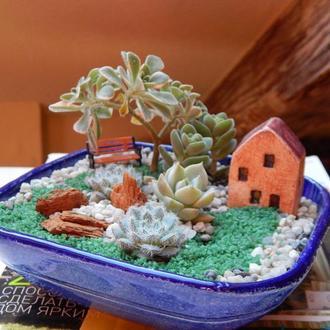 """Растительная композиция """"Волшебный сад"""""""