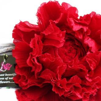 Брошь-заколка пион «Красный». Цветы из ткани.