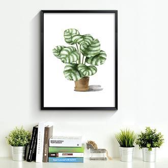 Графический постер Домашнее растение