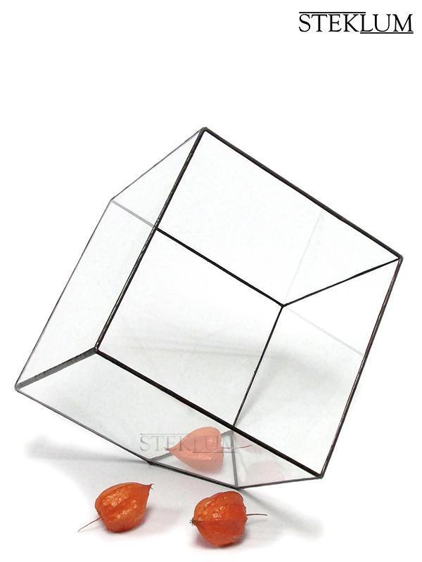 Флораріум №4 giga Cub