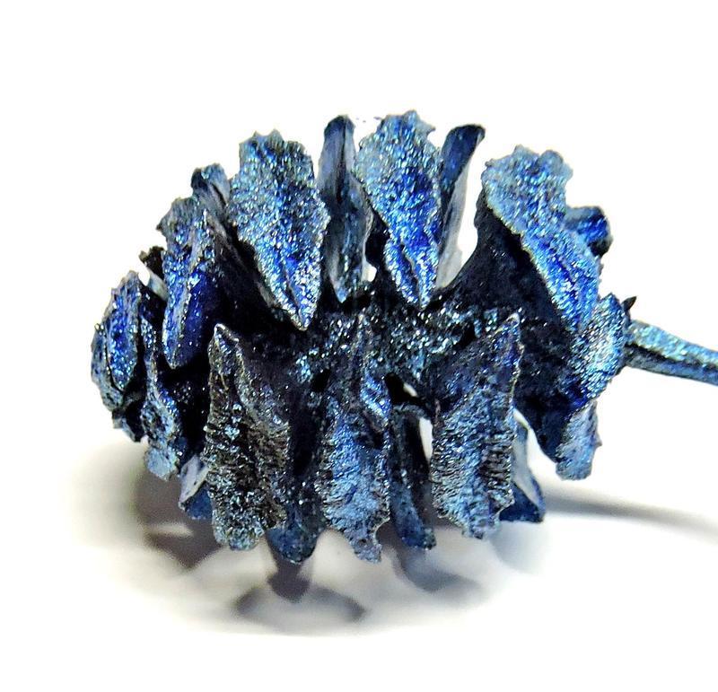 Шишка метасеквои натуральная крашеная голубая