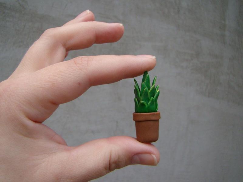 Комплект мініатюр Кімнатні квіти