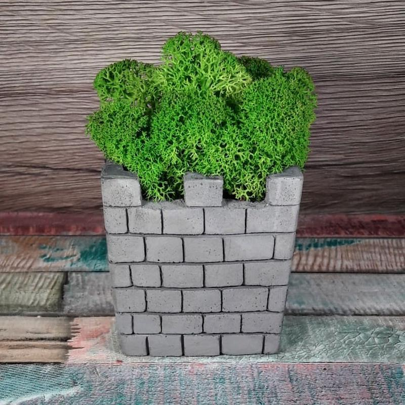Вежа з мохом