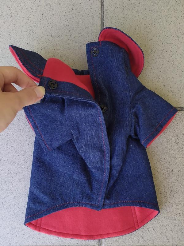 Джинсовое пальто для Йоркширского терьера