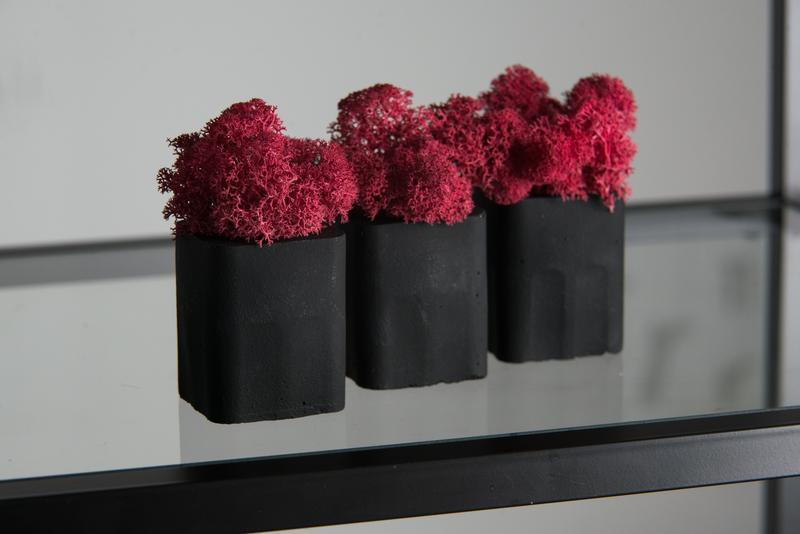 Набор. Красный скандинавский мох в бетоне. Набор из 3 шт.
