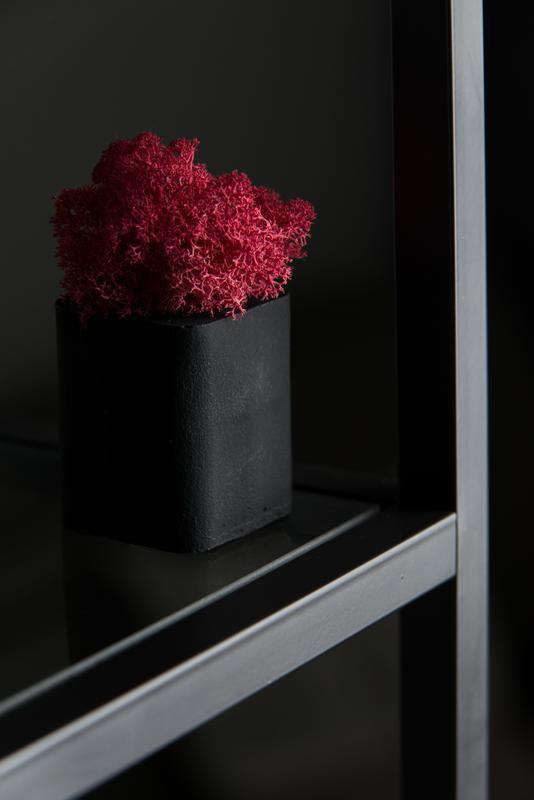 Скандинавський мох в бетонному кашпо