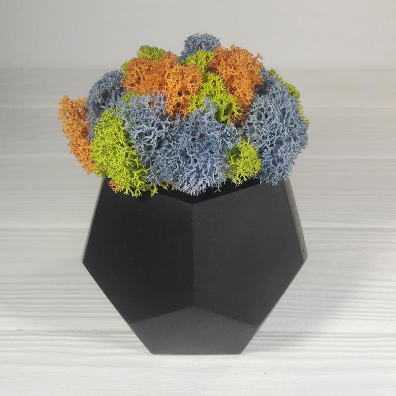 Чорний вазон з мохом