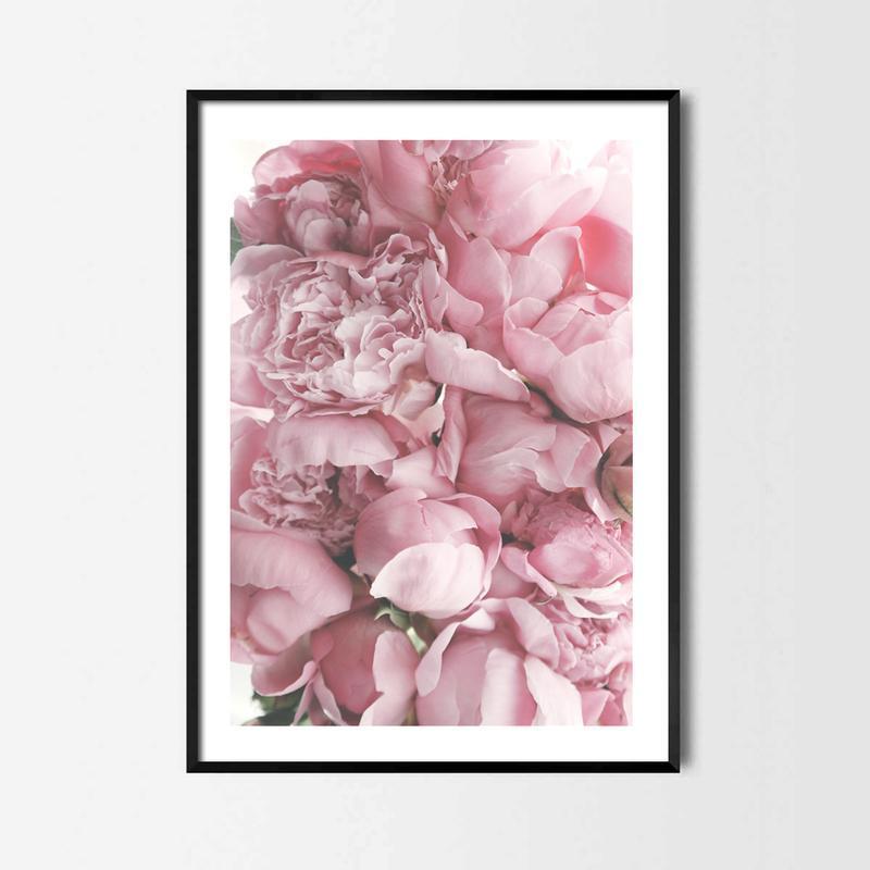 Фотопостер Розовые Пионы