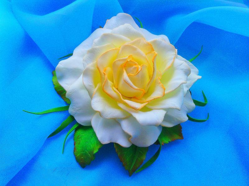 Біла троянда на шпильці