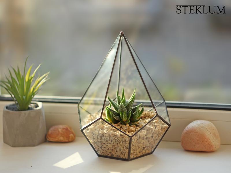 Флорариум №8 micro + набор для посадки композиций из суккулентов, кактусов