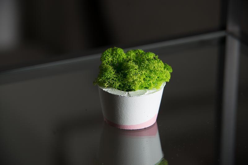 Бетонне міні кашпо білого кольору із геоментичним орнаментом та зеленим мохом