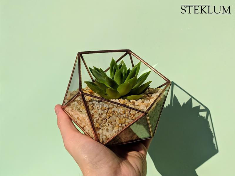 Флорариум №7 micro + набор для посадки композиций из суккулентов, кактусов