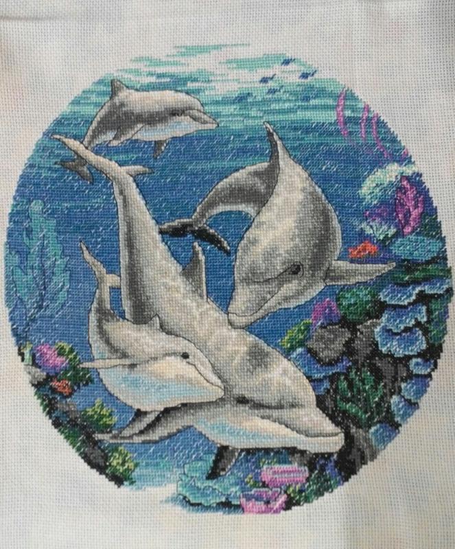 Дельфинарий лазаревское фото оставьте свой