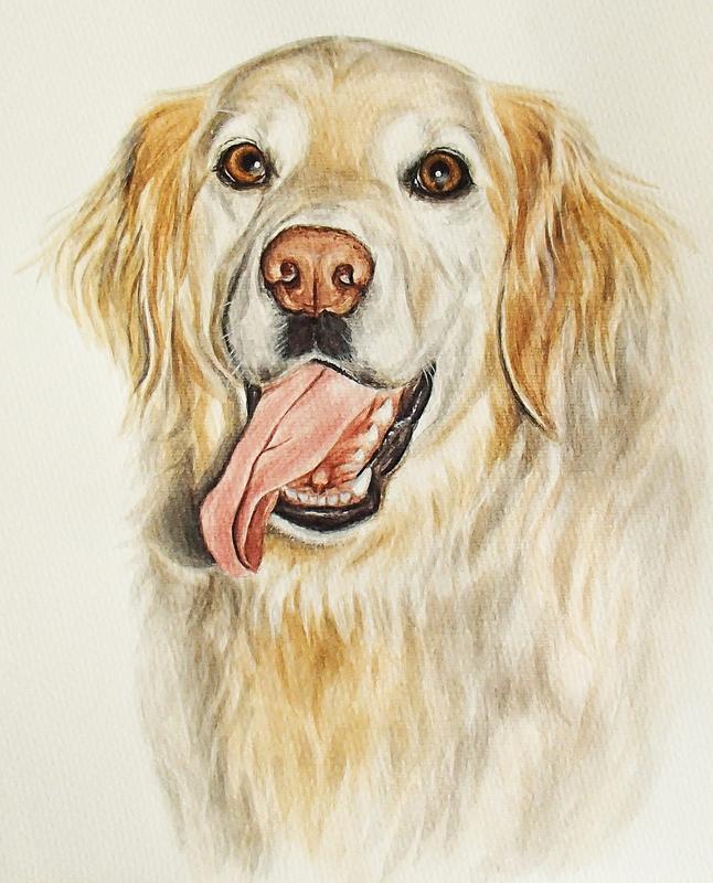 Портрет домашнего любимца, акварель, А3