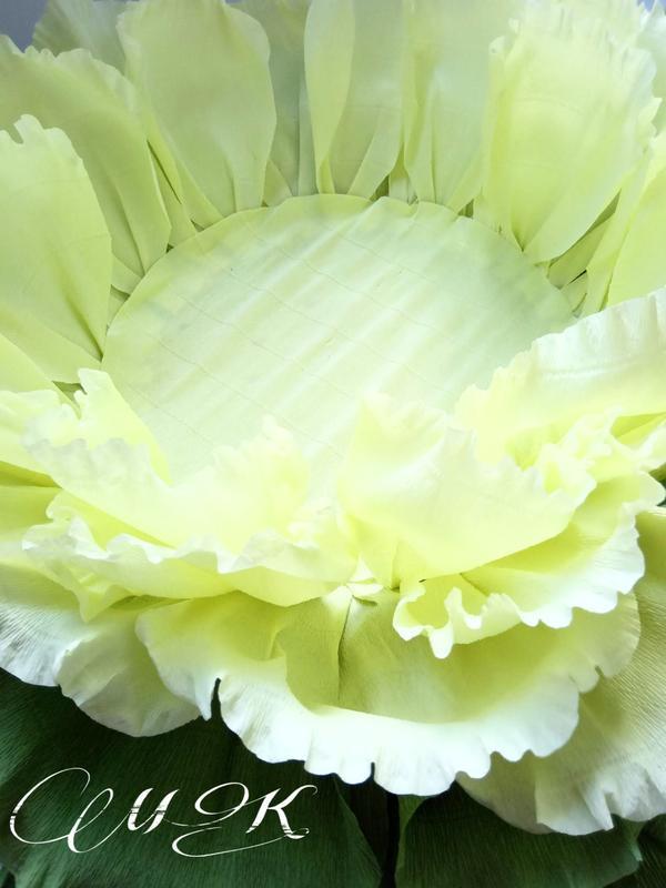 Гигантская капуста для Newborn фотосессии/ Ростовые цветы
