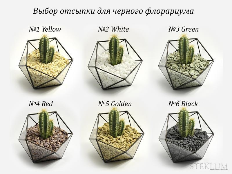 Флорариум №8 mini Comet + набор для посадки композиций из суккулентов, кактусов