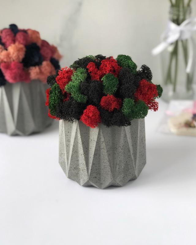Бетонний горщик кашпо з стабілізованим мохом 11*13 см / Бетонное кашпо из бетона для цветов L1