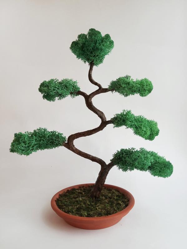 Дерево из натурального мха