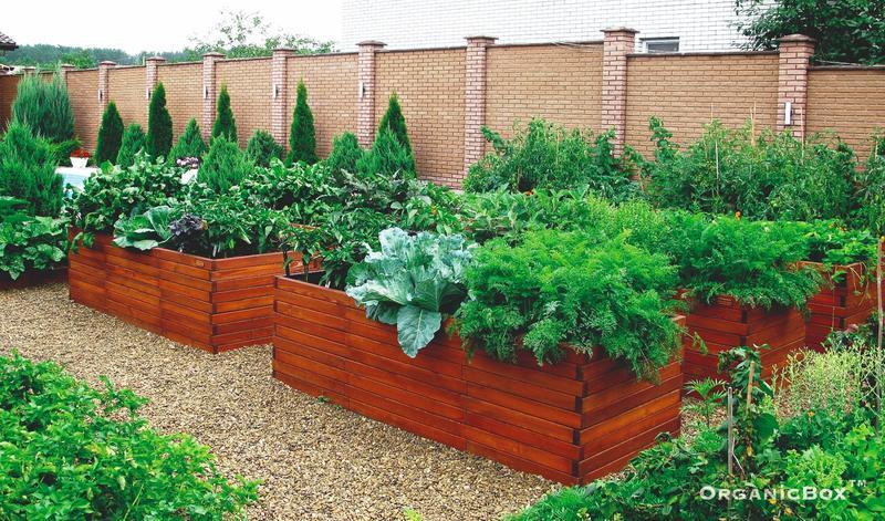 """Высокие грядки от производителя Organic Box TM, декоративный огород, обустройство """"под ключ"""""""
