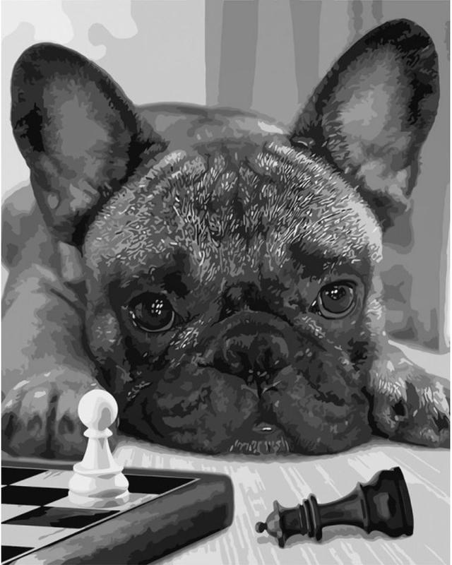 Картина по номерам Шах и мат