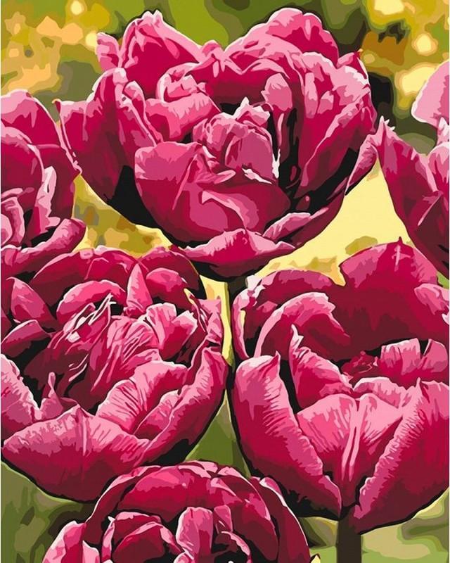 Картина по номерам 40x50 Изысканная элегантность