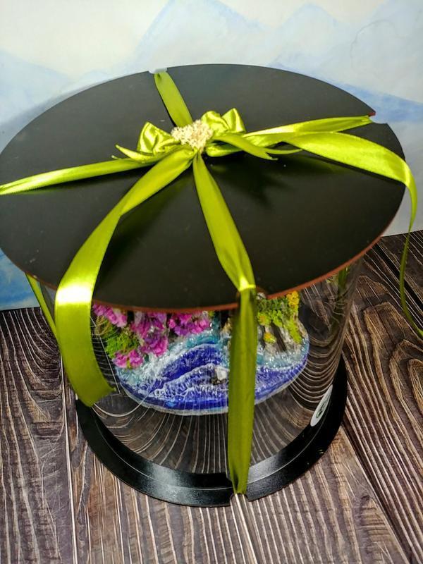 Бонсай, декор, стильний подарунок / подарок