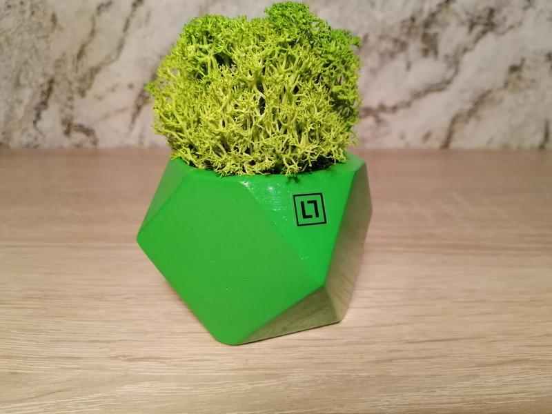 Бетонный горшок (Зелёный)