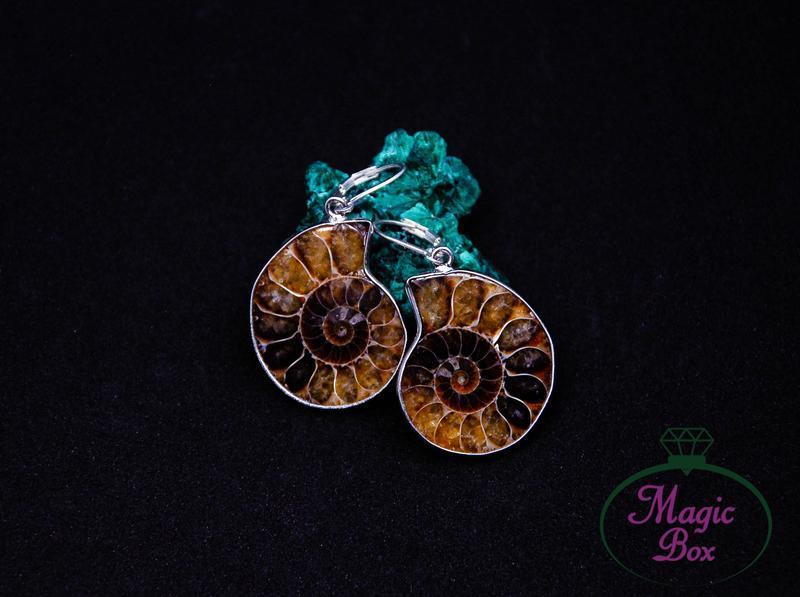 Серебряные серьги с аммонитом