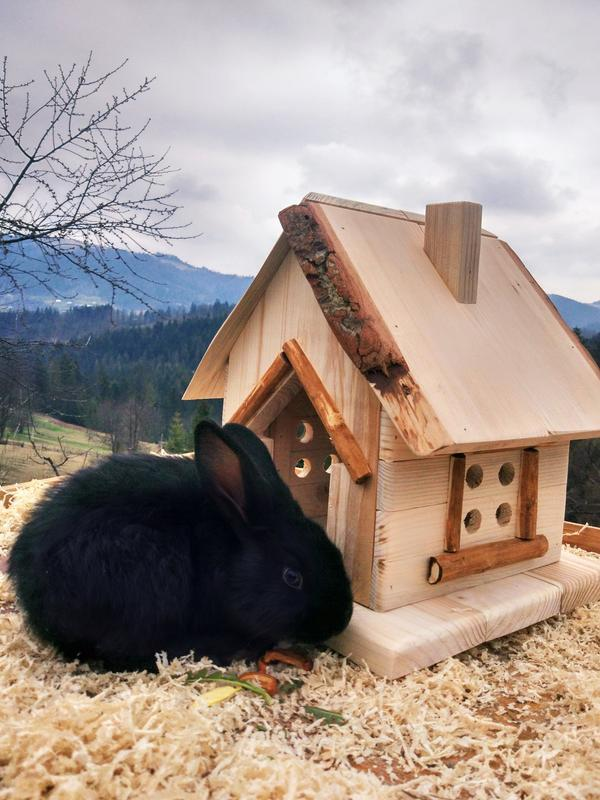Домик для животных №2