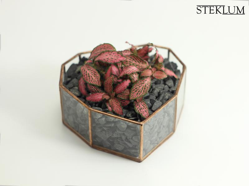 Флорариум №30 micro Heart copper
