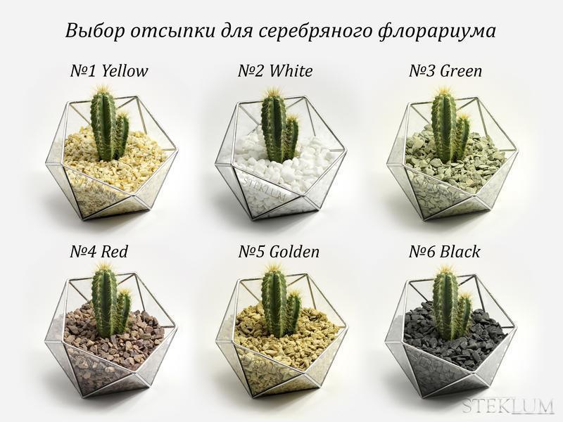 Флорариум №2 mini + набор для посадки композиций из суккулентов, кактусов