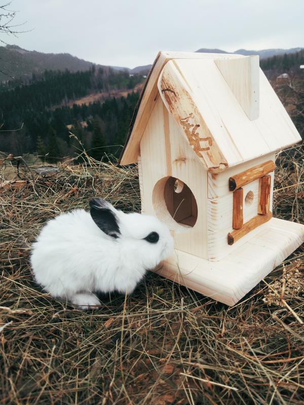 Домик для животных №3