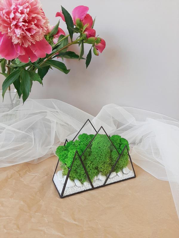 Флорариум со мхом горы. Моссариум в форме гор. Кашпо со мхом.