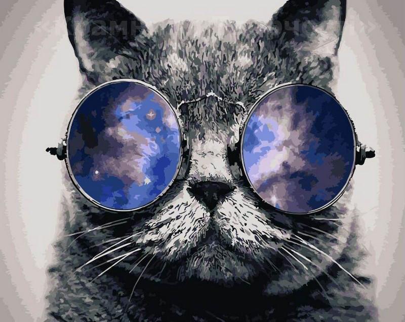 Картинки детские, картинки котяра в очках